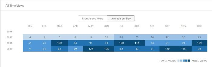 Year monthly report daily views